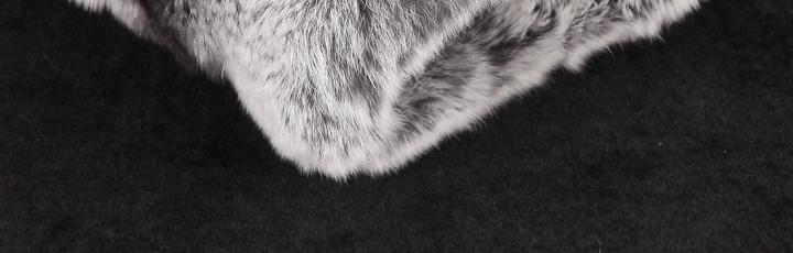 非洲黑木雕图片领羊